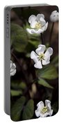 White Anemone Flowers Portable Battery Charger