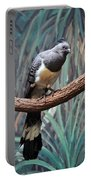 White-bellied Go-away-bird Portable Battery Charger