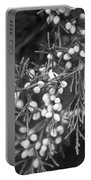 White Berries Portable Battery Charger