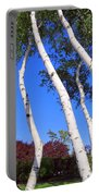 White Birch Blue Sky Portable Battery Charger