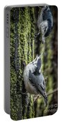 White Breasted Nuthatchs Portable Battery Charger