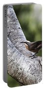White Brown Babbler Portable Battery Charger