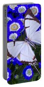 White Butterfly On Blue Cineraria Portable Battery Charger