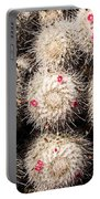 White Cactus Pink Flowers No1 Portable Battery Charger