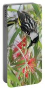 White-cheeked Honeyeater Feeding Portable Battery Charger