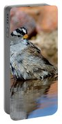 White-crowned Sparrow Bathing Portable Battery Charger