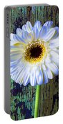 White Daisy With Green Wall Portable Battery Charger