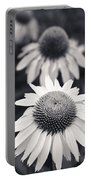 White Echinacea Flower Or Coneflower Portable Battery Charger by Adam Romanowicz