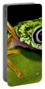 White-eyed Leaf Frog Portable Battery Charger