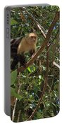 White-faced Capuchin Monkey In Manuel Antonio National Preserve-costa Rica Portable Battery Charger