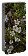 White Flowers And Moss Portable Battery Charger