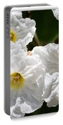 White Flowers In The Desert Portable Battery Charger