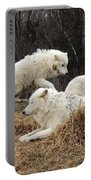 White Furs Portable Battery Charger