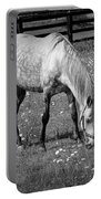 White Horse In A Pasture Among Daisy Flowers Portable Battery Charger