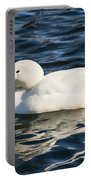 White Pekin Duck In Blue Water Portable Battery Charger