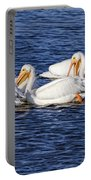White Pelicans Portable Battery Charger