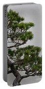 White Pine Bonsai Portable Battery Charger