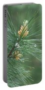 White Pine Flower N Spittle Bug Portable Battery Charger