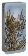 White Pine In Spring Portable Battery Charger