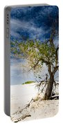 White Sands National Monument #1 Portable Battery Charger