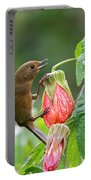 White-sided Flowerpiercer Portable Battery Charger