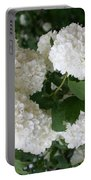 White Snowball Bush Portable Battery Charger