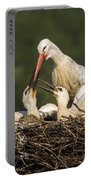 White Stork Portable Battery Charger
