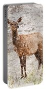 White Tailed Deer In Snow Portable Battery Charger