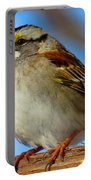 White Throated Sparrow And Blue Sky Portable Battery Charger