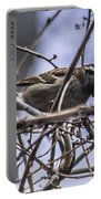 White-throated Sparrow With Berry Portable Battery Charger