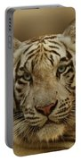 White Tiger II Portable Battery Charger