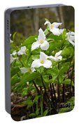 White Trillium Portable Battery Charger