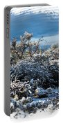 White Winter In The Desert Of Tucson Arizona Portable Battery Charger