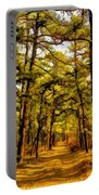 Whitebog Village Woods In New Jersey  Portable Battery Charger