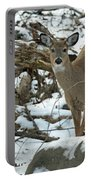 Whitetail Deer Doe In Snow Portable Battery Charger