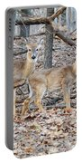 Whitetail Duo Portable Battery Charger
