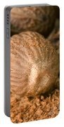 Whole Nutmeg Nuts Portable Battery Charger
