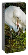 Whooping Crane Portable Battery Charger