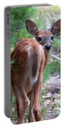Who's There? Portable Battery Charger