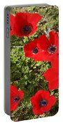 Wild Anemone Flowers In A Spring Field  Portable Battery Charger