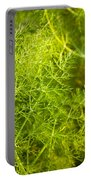 Wild Aniseed Portable Battery Charger