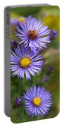 Wild Aster Trio Portable Battery Charger