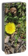 Wild Beauties Portable Battery Charger
