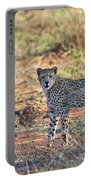 Wild Beauty... Portable Battery Charger