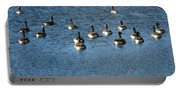 Wild Birds And Pond Portable Battery Charger