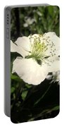 Wild Blackberry Blossom Portable Battery Charger