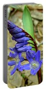 Wild Blue Hyacinth - Camassia Cusickii Portable Battery Charger