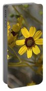 Wild Brittle Bush Flowers Portable Battery Charger