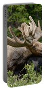 Wild Bull Moose Portable Battery Charger