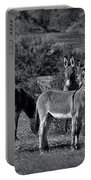 Wild Burros In Black And White  Portable Battery Charger